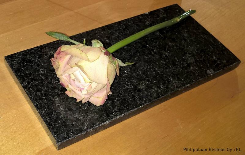 Kivialusta ruusu