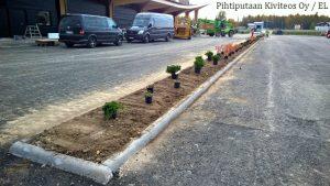 Syyskuussa on vielä hyvin aikaa istuttaa kasveja. Astiataimia voi istuttaa niin kauan kun maa on sula.